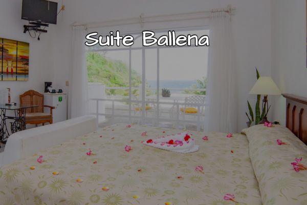 suite-ballena33958EBD-FE87-10B5-42EB-D44B133B0F3F.jpg