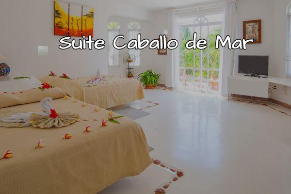 suite-caballo-de-marBB1AA9E3-0C49-C7A4-85FD-0418E154BDA5.jpg