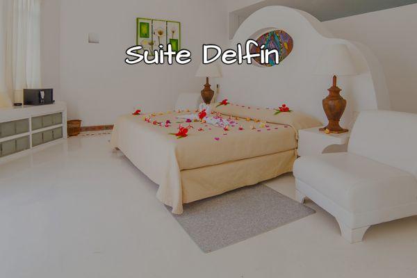 suite-delfin0447DF22-3C80-3203-8F1E-8FFE329F87B8.jpg